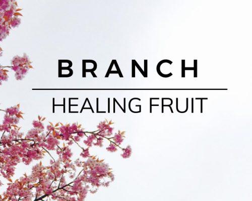 Branch: Healing Fruit