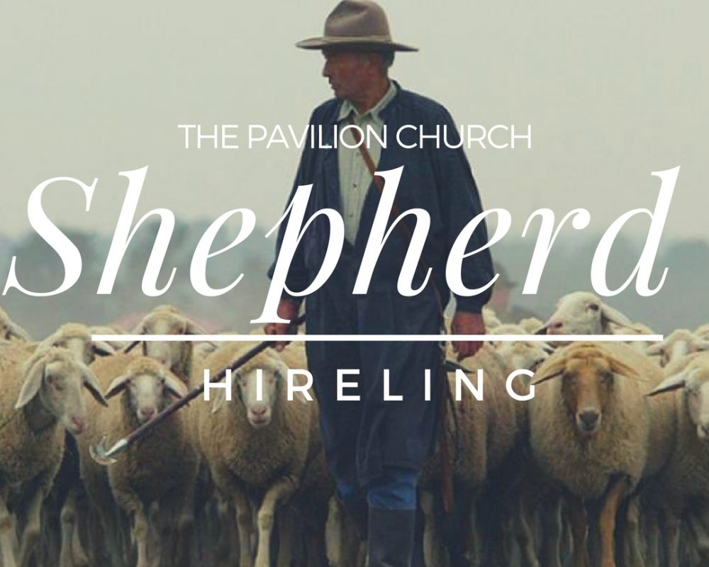 The Shepherd: Hireling