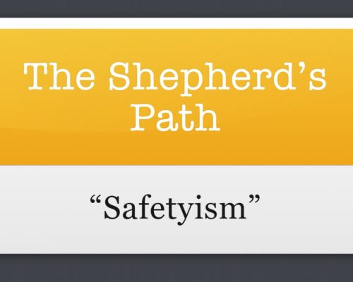 The Shepherd's Path: Safetyism