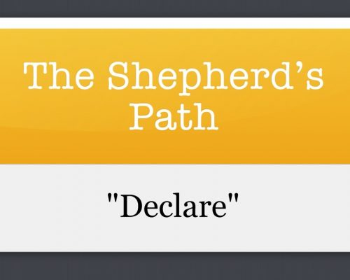 The Shepherd's Path: Declare